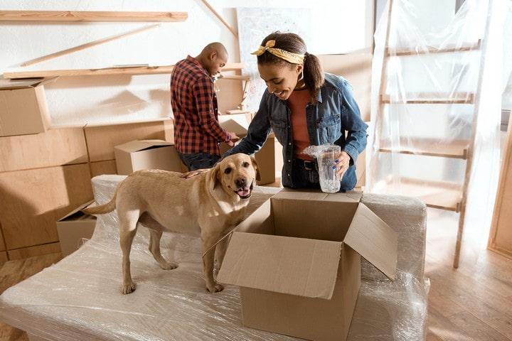 Liste de contrôle pour le déménagement: 10 choses à faire avant de quitter votre location en Europe