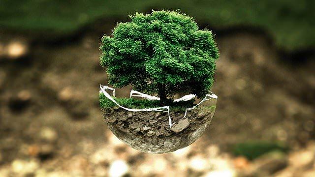 Qu'est-ce que la protection de l'environnement?